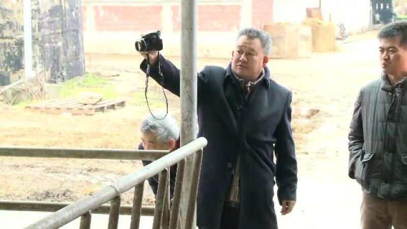 Procesatorii de lactate din Romania au ramas cu stocuri imense de produse. Lovitura uriasa pe care au primit-o de la chinezi