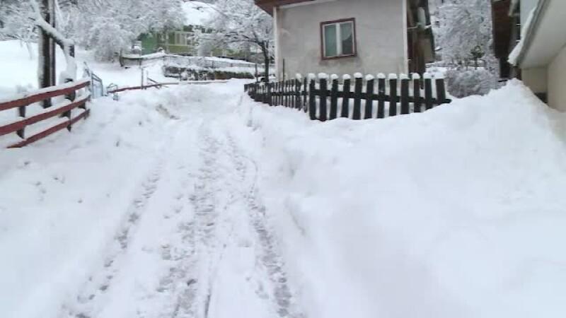 Pagubele provocate de ninsoare in cele 22 judete care au fost sub cod galben. In Cavnic, zapada are 1 metru inaltime