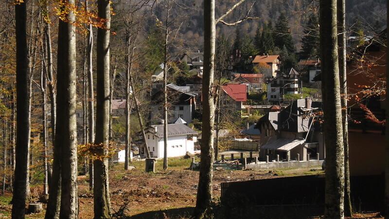 Proiect imobiliar in Parcul Natural Bucegi. Despaduririle ar fi inceput chiar de la seful ocolului silvic