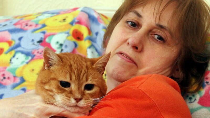 Pisicile au salvat-o de la moarte pe o britanica. Femeia suferea de cancer fara sa stie