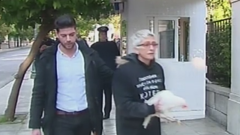 gaina tsipras