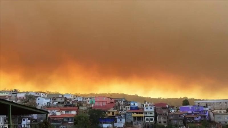 Cosmar in Valparaiso, orasul turistic chilian supranumit