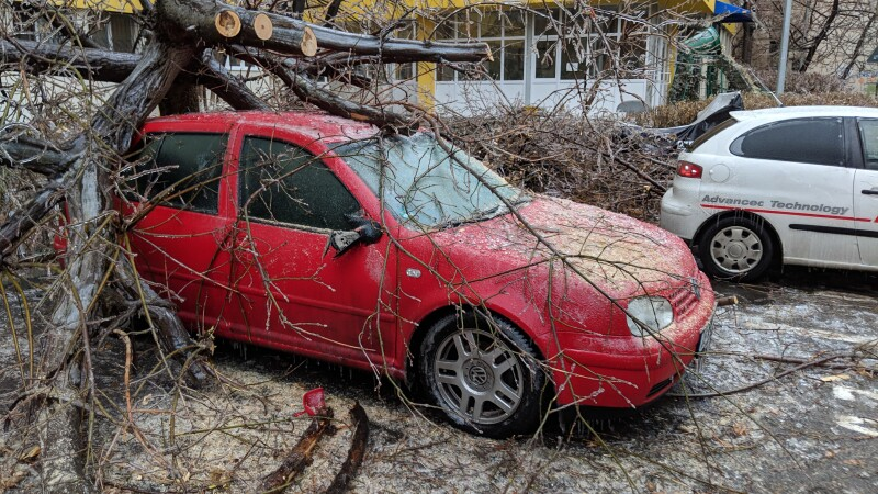 masina copac freezing rain