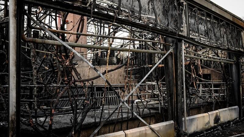 incendiu la zoo krefeld