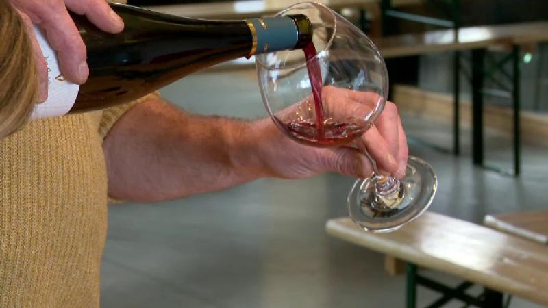 Drumul vinului din Alsacia, faimos în întreaga lume