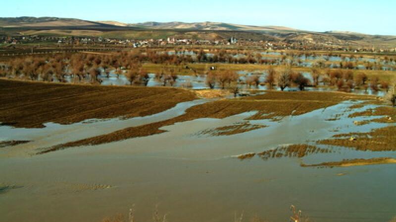 Inundatii culturi