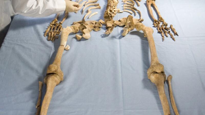 descoperire arheologica - oase de vichingi - 1