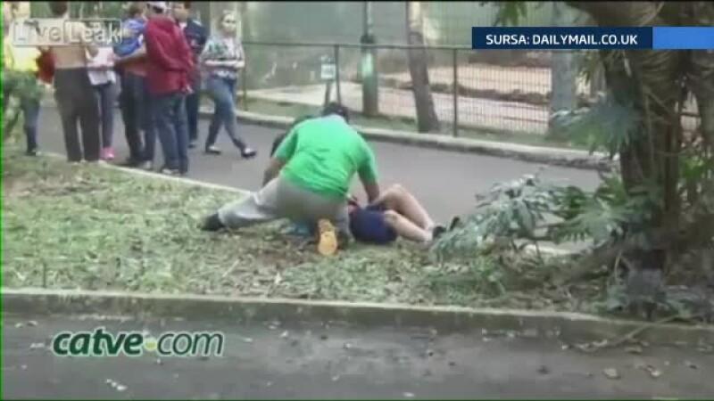 zoo Brazilia