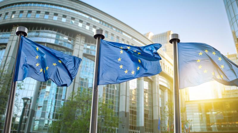 Prima reacție a unui oficial al UE despre declarațiile controversate ale lui Dăncilă