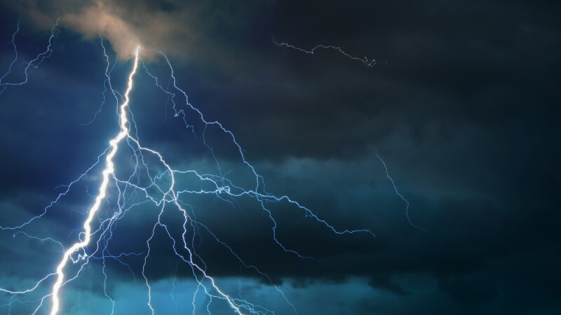 furtuna - Shutterstock