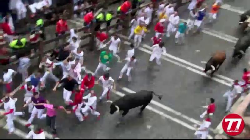 cursa de tauri de la Pamplona