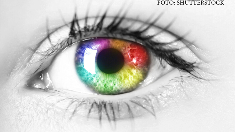 ochi culori