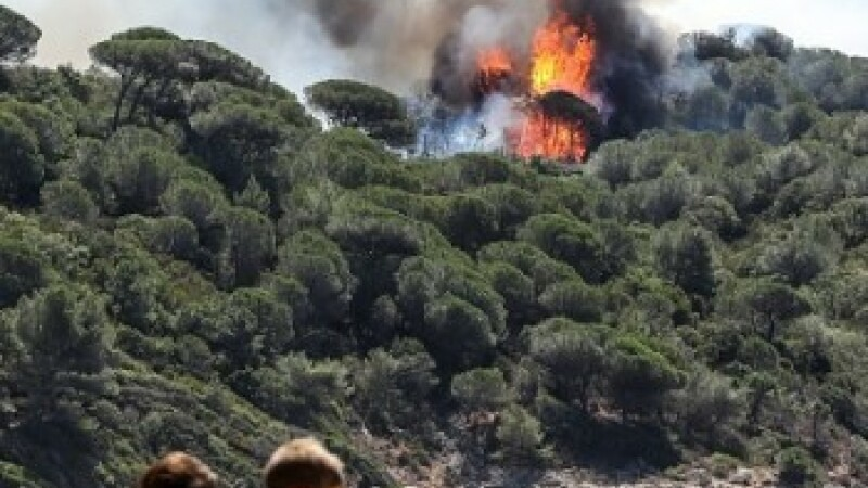 Incendii de vegetatie in sudul Frantei