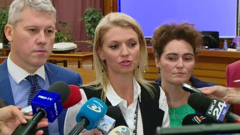 Atac în grup al liderilor PNL la adresa lui Ludovic Orban, după rezultatul referendumului