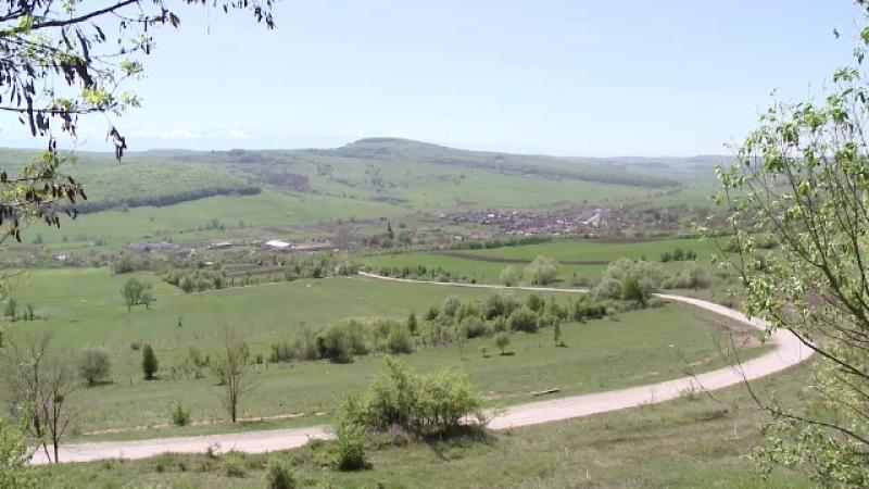 Motivul pentru care pășunile din România sunt degradate și neîngrijite