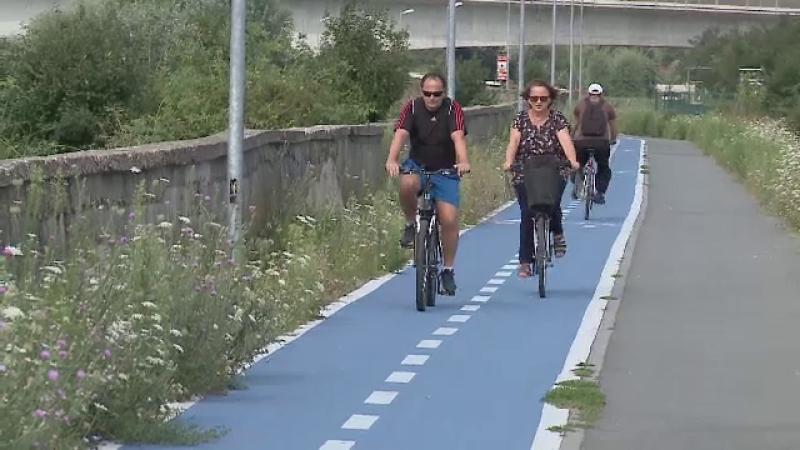 Pistă de biciclete, invadată de ambrozie. Oamenii pot ajunge în orice moment la Urgențe