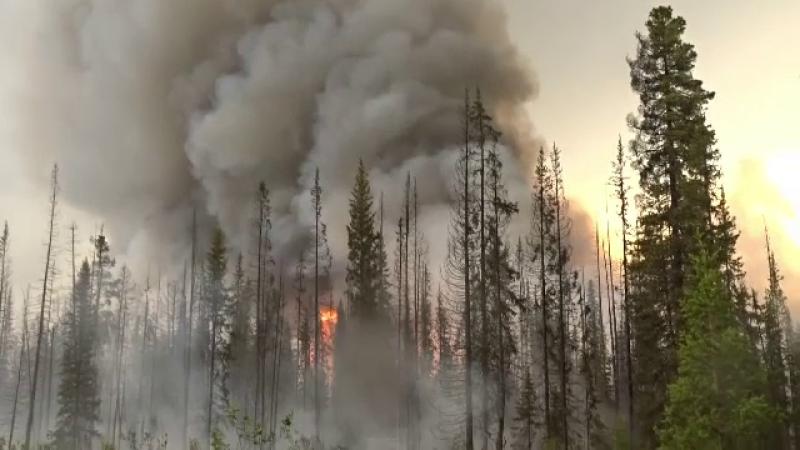 Stare de urgență în Siberia. Incendiile de vegetație au cuprins peste 3 milioane de hectare