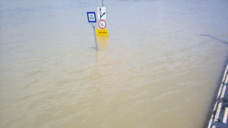Dunarea a depasit cotele de atentie in Olt si a inundat peste 200 de hectare de pasune