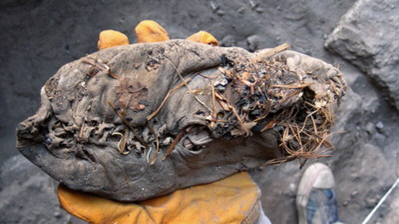 Cel mai vechi pantof din lume