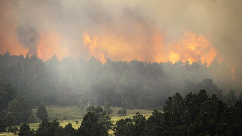Incendiu de vegetatie in Colorado