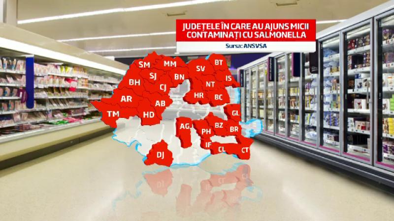 Rezultatele analizelor la micii cu salmonella: nu prezinta risc pentru sanatatea publica