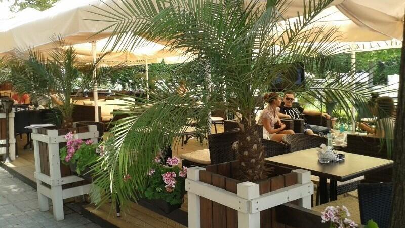 palmieri terase