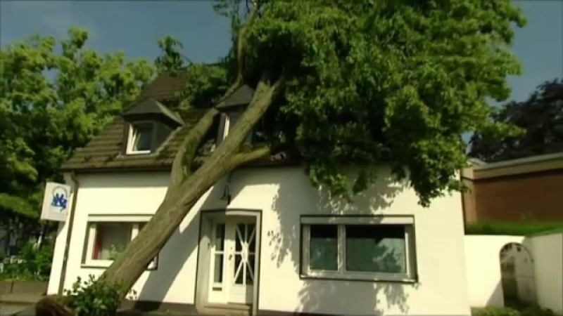 furtuna Germania