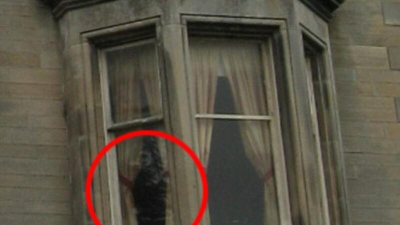 Fotografia care ii sperie pe locuitorii unui oras din Scotia. Ce se intampla cu cainii care ajung in apropierea casei