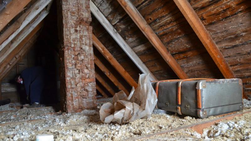 valiza din pod