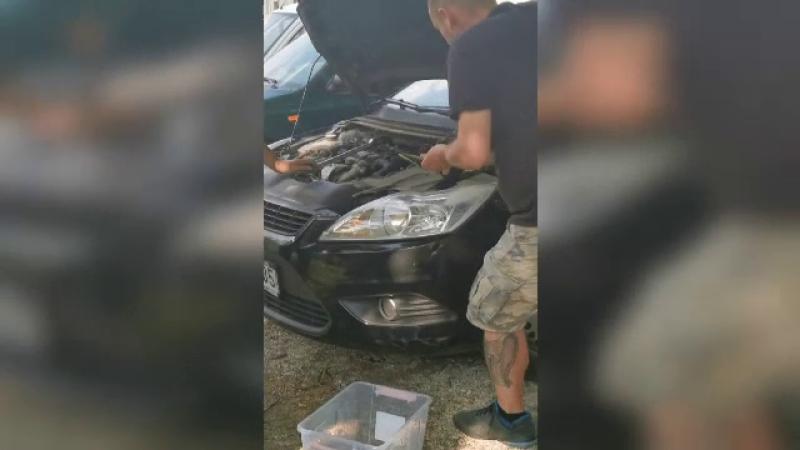 capota, masina, serpi, motor,