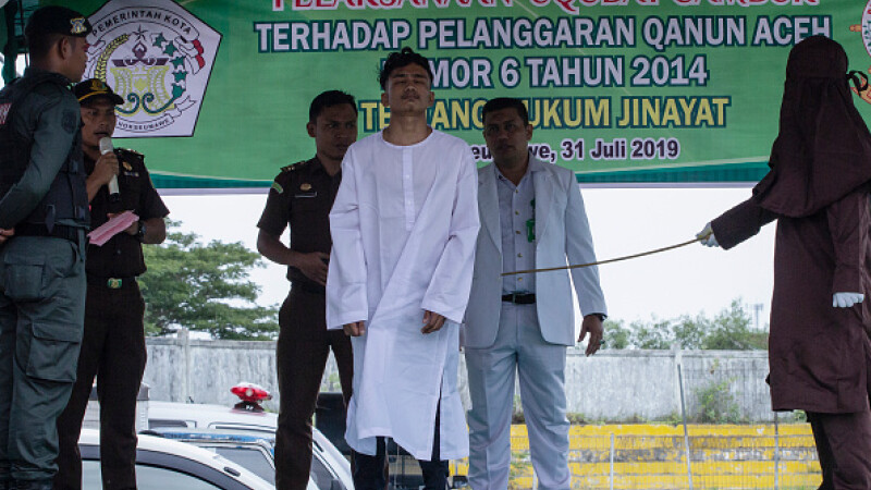 barbat biciuit in indonezia