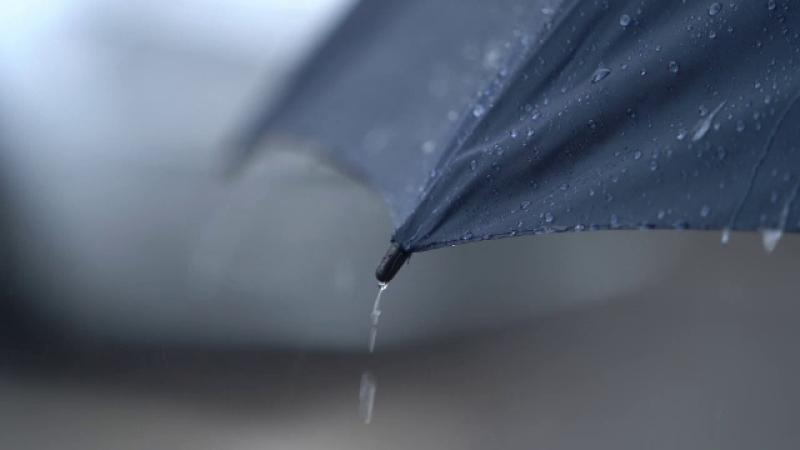 Ploi și vijelii