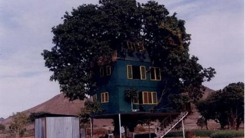 casa din mango