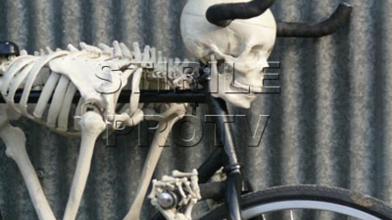 Bicicleta schelet