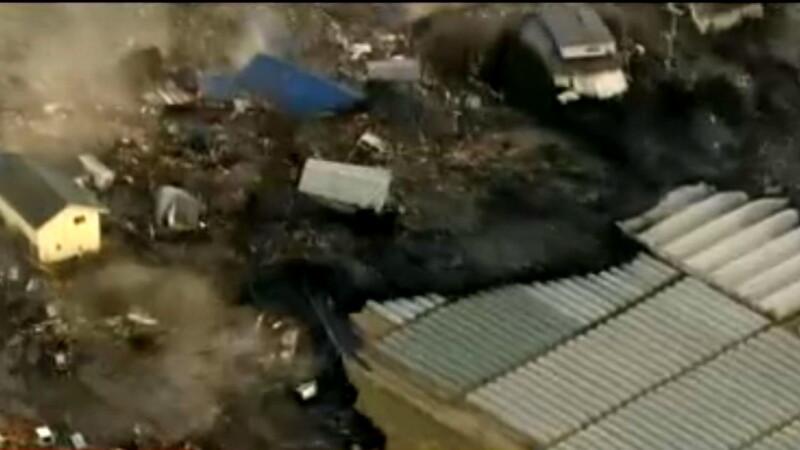 Valul seismic din Japonia