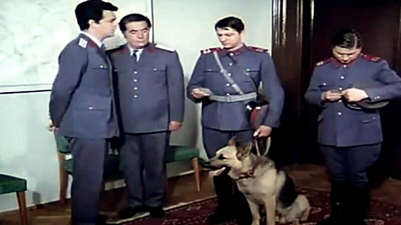 Plutonierul Capsuna si cainele Costel, admirati de politisti. MAI difuzeaza seria Brigada Diverse