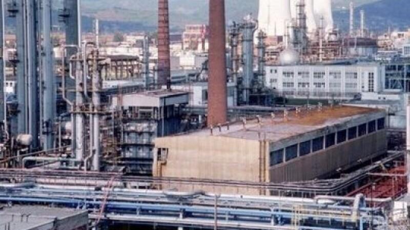 Divizia Petrochimica Bradu
