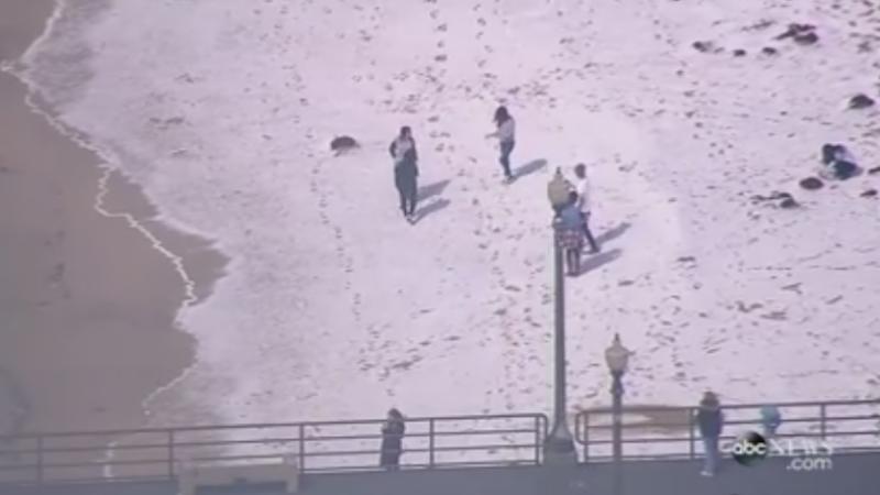 Fenomen extrem de rar in sudul Californiei. Plajele au fost acoperite cu un strat gros de grindina si zapada