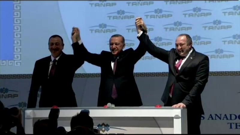 Turcia gaze
