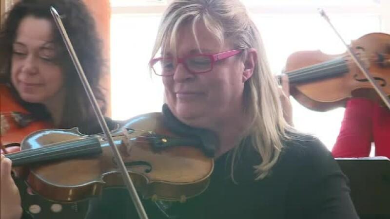 violonista, concert