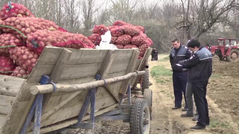 Un barbat din Targoviste a murit, dupa ce a ajuns sub rotile remorcii pline cu cartofi. Ce povestesc vecinii despre el