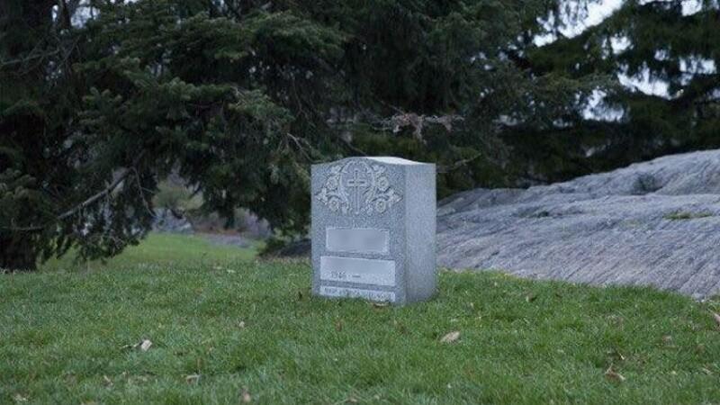 Mormantul care a aparut peste noapte in Central Park din New York. Ce au vazut oamenii cand au mers mai aproape