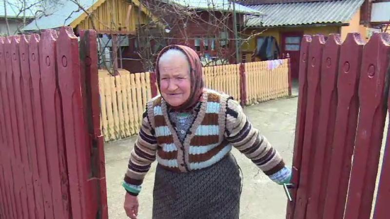 bătrână Dâmbovița