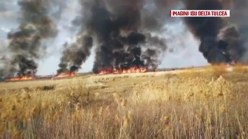 incendii Delta Dunarii