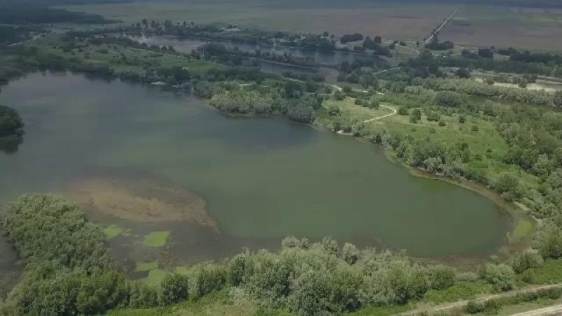 insula Belina