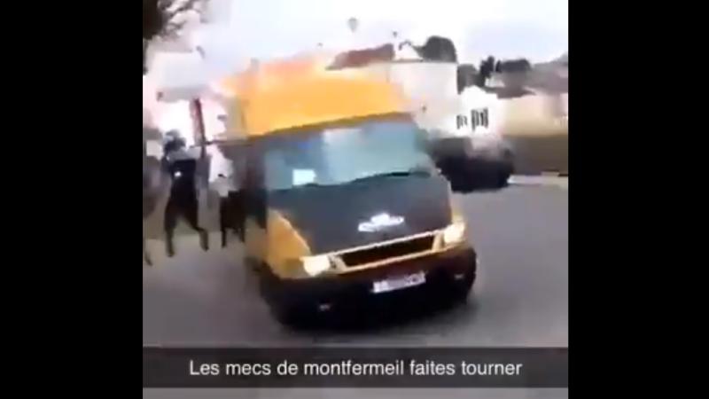 duba atacata in Franta