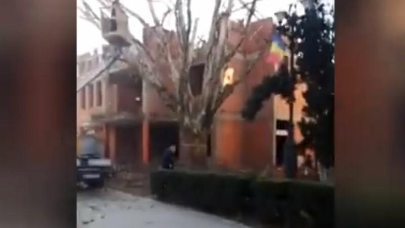 Scandal în Cîmpeni. Copacul anului 2018 în România, toaletat cu drujba. VIDEO