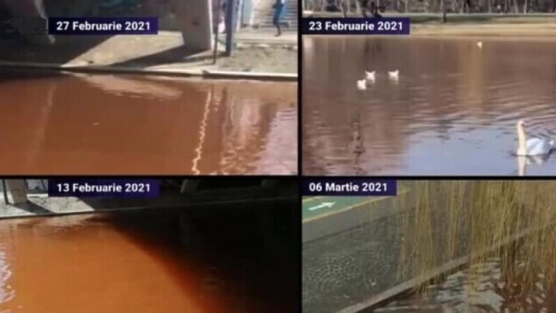 Lacul IOR nu ar fi poluat cu fecale, consideră ministrul Mediului. Rezultatele analizelor nu sunt \