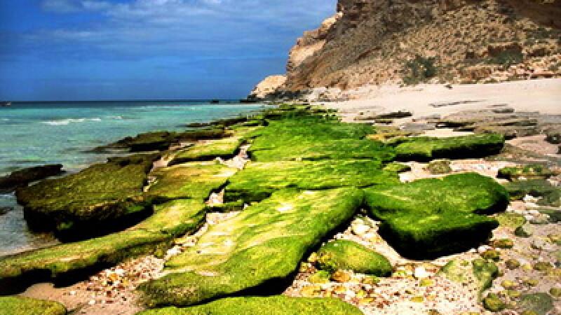Insula Socotra10
