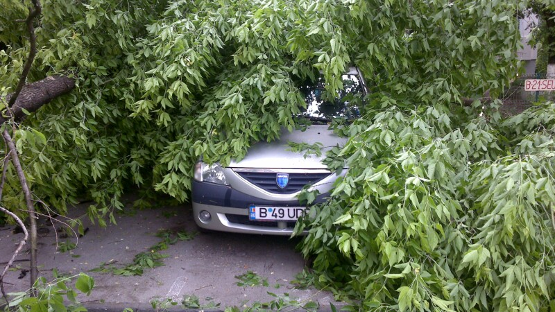 Furtuna in Banat si ploaie cu grindina la Brasov, dupa un weekend torid